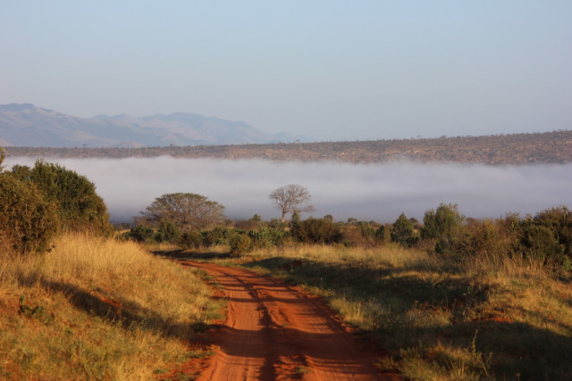 4 Days Tsavo East / Amboseli / Tsavo West National Parks (PFA MS-006)